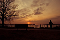 Found (Rocco Peditto) Tags: sunset girl looking searching standing waiting silhouette warm tree waterfront red bank battlefield roccopeditto nikon d90 sigma 1750 28 hsm os