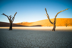 "Deadvlei Sossusvlei Namibia • <a style=""font-size:0.8em;"" href=""https://www.flickr.com/photos/21540187@N07/8291684383/"" target=""_blank"">View on Flickr</a>"