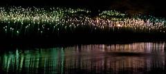 CV084 Field of Light (listentoreason) Tags: usa art museum night america canon geotagged artist unitedstates pennsylvania geocoded scenic favorites places longwoodgardens ef28135mmf3556isusm score30 fieldoflight brucemunro