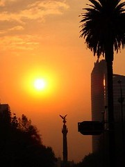 "Mexico City • <a style=""font-size:0.8em;"" href=""http://www.flickr.com/photos/86829008@N03/8299079111/"" target=""_blank"">View on Flickr</a>"
