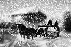 Few Days Before The Christmas. (Nellie Vin) Tags: road winter light sky horses people blackandwhite house snow man weather photoshop print landscape photography vermont shadows contemporaryart fineart photograph snowing snowroller nellievin pentasx