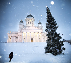 Snowing on Christmas day: Helsinki cathedral (miemo) Tags: city winter snow tree church stairs finland helsinki europe cathedral windy olympus christmastree snowing blizzard omd senaatintori senatesquare helsinkicathedral explored em5