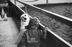 The dog and the child (Biagio De Giovanni) Tags: leica portrait blackandwhite bw dog film portraits spain kodak 400tx espana v600 summilux spagna albacete leicam6 cuadra trix400 picadero 50summilux biagiodegiovanni epsonperfectionv600 perfectionv600 equitalba