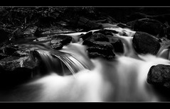 Out Of The Dark (A-D-Jones) Tags: wood trees fall water rocks stream long exposure branches panoramic chorley rivington bolton land brook horwich