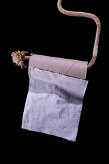 Sheet on a Rope! (Rusty Marvin - JohnWoracker.com) Tags: white black last paper puppy toilet rope single roll sheet frayed