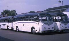 SDF203 and SDF202 (21c101) Tags: sdf203 sdf202 blackandwhite aec reliance willowbrook cheltenham coachstation 1969 gloucestershire 1957 mu3rv 202 203 blackandwhitemotorways
