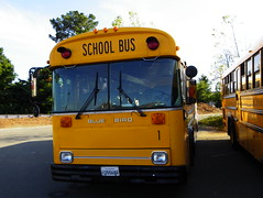 School Bus (kevin42135) Tags: california blue school bus bird ic all er thomas kingdom flags international american 80s a3 re six discovery vallejo tc2000 icre westcoaster tcre saftliner a3re
