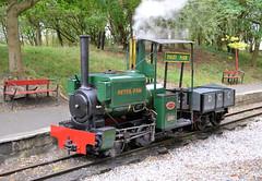 Peter Pan Senior (R~P~M) Tags: uk greatbritain england train unitedkingdom beds bedfordshire railway peterpan steam locomotive leightonbuzzard narrowgauge kerrstuart