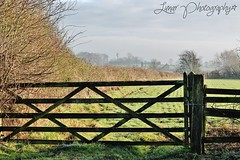 Gateway (Imogen Moon) Tags: life trees winter england cold tree nature beautiful beauty walking landscape outside outdoors countryside amazing gate walks pretty natural gates walk derbyshire country hill farming farmland elements gateway land hillside derby winters