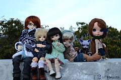 Group picture #1 (navci) Tags: bjd blythe soom bluefairy pipos teeniegem angelheim babycheshire shinyfairy mdafi mdpyrol juniorheimciel sfpaul