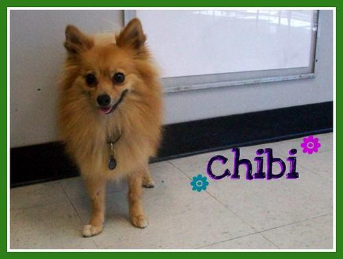 chibi1
