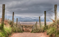 Pathway to the beach (GillWilson) Tags:
