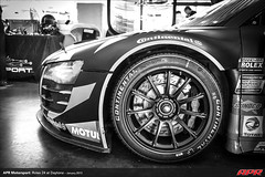 APR-Motorsport-Rolex-24-2013-002