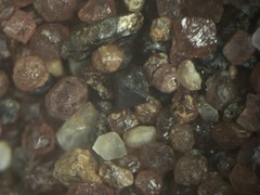 zircon or magnetite crystal (rogscivid) Tags: macro gold sand crystal maine grains panning microscope zircon garnet concentrate magnetite swiftriver rogscivid cooscanyon