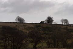 IMG_1887.CR2 (deargdoom57) Tags: botton danby northyorkshiremoors