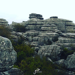 El Torcal Natural Park Tour with Marbella Escapes (marbellaescapes) Tags: eltorcal naturalpark karst limestone antequera andaluca malaga marbella costadelsol spain travel tours landscape geology