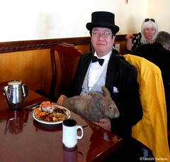 Dr. Takeshi Yamada and Seara (Coney Island Sea Rabbit) at the East Ocean Buffet Chinese restaurant in Brooklyn, NY on April 3, 2016.  20160403Sun DSCN4939=1020pC1. East Ocean Buffet (searabbits23) Tags: searabbit seara takeshiyamada  taxidermy roguetaxidermy mart strange cryptozoology uma ufo esp curiosities oddities globalwarming climategate dragon mermaid unicorn art artist alchemy entertainer performer famous sexy playboy bikini fashion vogue goth gothic vampire steampunk barrackobama billclinton billgates sideshow freakshow star king pop god angel celebrity genius amc immortalized tv immortalizer japanese asian mardigras tophat google yahoo bing aol cnn coneyisland brooklyn newyork leonardodavinci damienhirst jeffkoons takashimurakami vangogh pablopicasso salvadordali waltdisney donaldtrump hillaryclinton polarbearclub