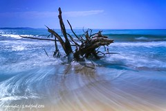 Abstract Driftwood (Holfo) Tags: drfitwood sea wave filter ocean greece corfu abstract blue waves motion