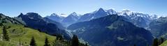 Panoramic view on Eiger Mönch & Jungfrau Bernese Alps Switzerland (roli_b) Tags: schynige platte schynigeplatte panoramic view vista panorama eiger mönch jungfrau maiden virgen mount mt monk bernese alps oberland alpen schweizer berner swiss landscape mountains montañas berge switzerland schweiz suisse suiza svizzera