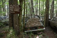 Twice (Todd Evans) Tags: nikon d7100 sigma18150 oldcarcity car auto automobile chevrolet chevy vega