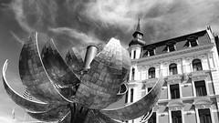 Der Kugelbrunnen Achen /De Kogelfontein Aken (jo.misere) Tags: bloem bollen fontein staal water aken duitsland germany zw bw vlaggen flags punt tower steel ngc