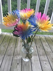 (hyphenated_czech) Tags: vaseofflowers vase deck nature beautiful multicolored colorful flowers