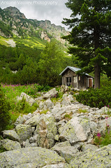 / Bungalow (AVasilev) Tags:       bungalow malyovitsa hut rila mountain rocks