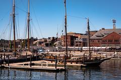 20160912-BFF_5964 NEW LONDON CT (Bonnie Forman-Franco) Tags: seaport newlondon ct sailboats boats