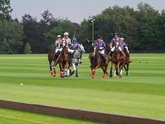 Guards Polo Club Aug 2016 18 (Timelapsed) Tags: sport ourdoors horseback hourse windsor windsorgreatpark