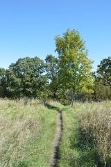 DSC_0086 (North Country Trail) Tags: sheyenne stateforest northdakota hiking