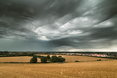 Stormy Sky Over Sawtry (Adam_Marshall) Tags: adam marshall summer landscape sawtry nature stereocolours outdoors field hills trees sky clouds adammarshall countryside cambridgeshire weather storm vast uk dark atmospheric wide canon eos70d sigma 1750mmf28