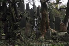 Naritasan Shinsh-ji (Toni Kaarttinen) Tags: japan  japonia    jap japonsko jaapan  japani japon xapn    japn jepang an tseapin giappone  japna japonija  japo  japonska japn hapon  japonya nht bn japanese narita naritacity naritatown naritasan shinshji naritasanshinshji tempel shrine