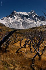 Moonlight I (impodi@gmail.com) Tags: luzdeluna moonlight nocturna paisaje landscape chile torresdelpaine paine cuernosdelpaine patagonia