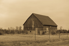September Barn (gabi-h) Tags: barn sepia monochrome fence princeedwardcounty farm rural rustic gabih field