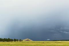 DSC_0013-15 monsoon hdr 850 (guine) Tags: monsoon storm clouds grass trees plants hdr qtpfsgui luminance