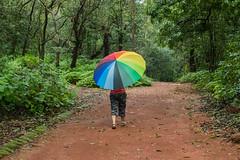 Matheran-5164 (Satish Chelluri) Tags: satishchelluri satishchelluriphotography matheran maharastra umbrella mansoon