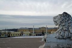 Castle Schnbrunn (Miss_Iks) Tags: vienna wien christmas winter austria sterreich advent capital hauptstadt sightseeing weihnachtszeit sehenswrdigkeit habsburger