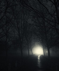 Mist Light 2 (Ben Atmer) Tags: park light blackandwhite mist bristol path creepy mysterious fujix10
