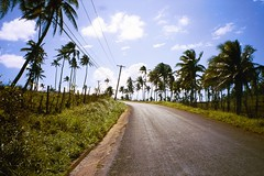 Country Road, Vavau, Tonga (clear_eyed_man) Tags: travel