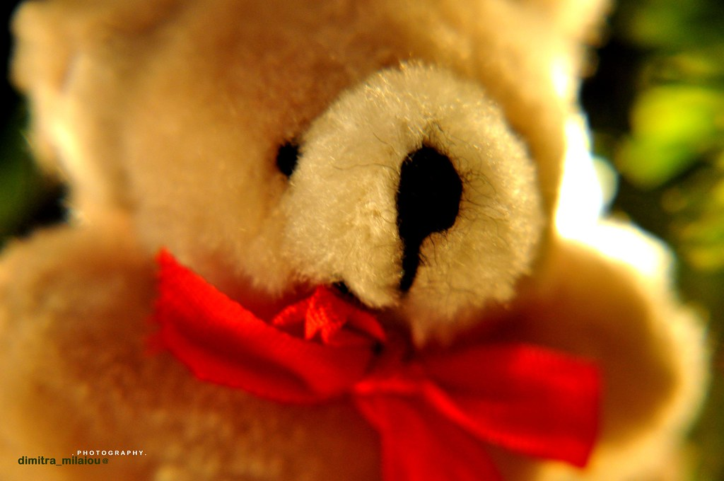 Smile Toys And Joys : The world s best photos of portrait and toy flickr hive mind