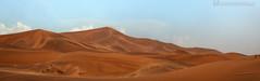 Sahaara (capiotti) Tags: sahara camel morocco maroc camello tuareg marrocos erg merzouga ergchebbi chebbi sahaara