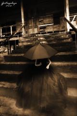The Black Widow (jfortugaleza) Tags: umbrella dark scary silent hill morbid horror gloom
