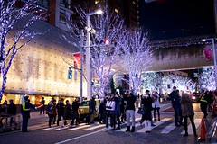 We love photo! (kura51) Tags: christmas winter japan tokyo december    2012 keyakizaka ef35mmf2  5dmarkiii