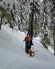 New faces (johnwporter) Tags: hiking scramble scrambling climbing cascades wilderness pacificnorthwest nature mountains cooperlake lake snowshoe 徒步 爬行 爬山 喀斯喀特山脈 荒野 大自然 山 古柏湖 湖 雪鞋 雪鞋行