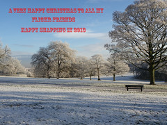 Christmas card (DianneB 2007.) Tags: winter white snow cold ice frost hoarfrost freezing dec chilly sthelens 2010 sherdleypark
