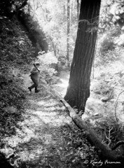 Photo Hunting (Randy Forsman) Tags: california blackandwhite bw film 35mm path bigsur hike trail bigsurca randyforsman