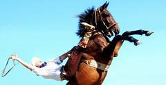 Muita energia, amigos, em 2013... (Eduardo Amorim) Tags: brazil horses horse southamerica brasil caballo cheval caballos cavalos pelotas pferde cavalli cavallo cavalo gauchos pferd pampa hest hevonen campanha brsil chevaux gaucho  amricadosul hst gacho  campero amriquedusud  gachos  sudamrica suramrica amricadelsur  sdamerika jineteada   camperos americadelsud gineteada  americameridionale campeiros campeiro eduardoamorim