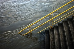 Emergence  366-366 #3 (Samyra Serin) Tags: france stairs river europe flood gimp potd drago 2012 year3 fleuve marne valdemarne aphotoaday alfortville day366 project365 fattal qtpfsgui samyras k200d day1096 mantiuk06 shuttercal reinhard05 luminancehdr stairaholic mantiuk08 pentaxdasmc1855mm samyraserin samyra008 noscreenchallenge