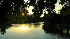 LAGO SESC - CALDAS NOVAS - GO - BRASIL. (Opimentas) Tags: trees sunset brazil sky cloud sun tree verde green bird sol nature brasil angel clouds landscape flickr janeiro photos tag natureza go january pssaro tags paisagem prdosol wikipedia bento arvore arvores novas abs rvore ops rvores gois caldas entardecer sesc wikimedia caldasnovas 2013 wikipdia onofrepimenta wikimdia caldasnovasgo opimentas bhto guasquentes january2013 caldasnovasgois janeiro2013 sesccaldasnovas