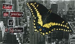 journey of a lifetime (witt0071) Tags: collage butterfly postcard newsweek swapbot journe